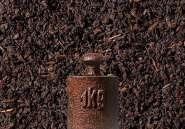 Schwarzer Tee Ceylon BOP Aislaby