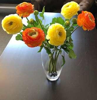 Ranunkel - Strauß orange/gelb